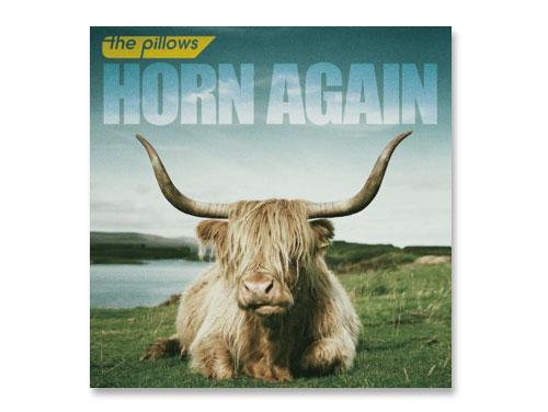 HORN AGAIN(DVD付) / the pi…