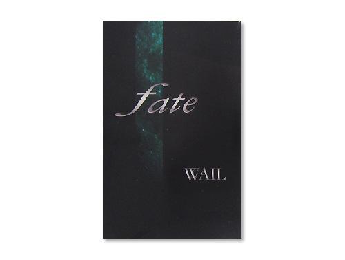 fate(デモテープ)/WAIL