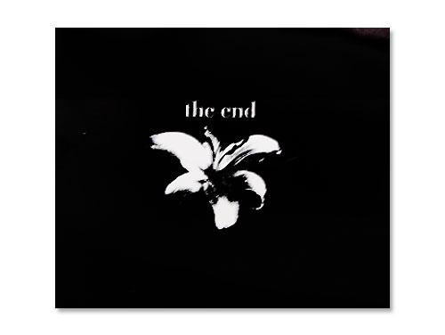 the end[会場限定配布CD]/清春