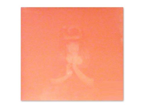 勝訴ストリップ [限定アナログ盤LP]/椎名林檎