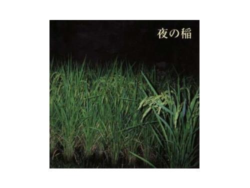 夜の稲[廃盤]/工藤礼子