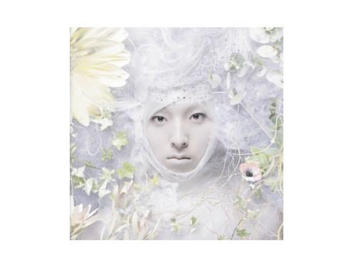 EVE[初回限定盤 DVD付]/SHOWTA.