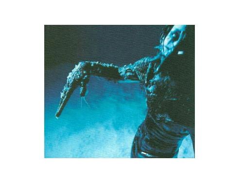 -CREATURES- 初回盤[限定CD]/PIERROT