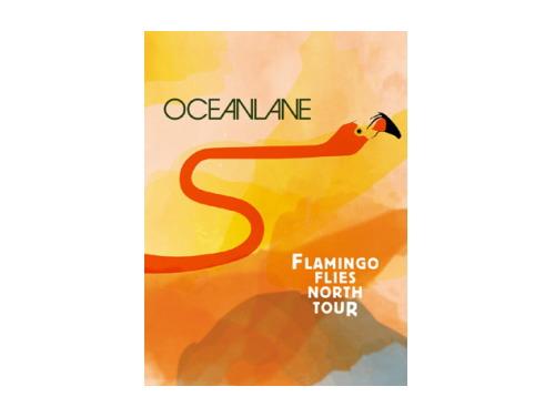 FLAMINGO FLIES NORTH TOUR 初回盤[限定DVD]/OCEANLANE
