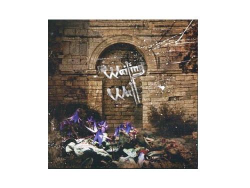 Wailing Wall 初回盤[限定CD]/SCREW