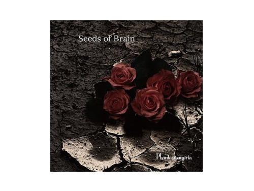 Seeds of Brain[限定CD]/Phantasmagoria