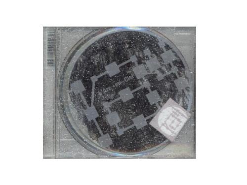 ray 初回盤[限定CD]/L'Arc~en~Ciel