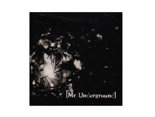 Mr.Underground[廃盤]/the Pumpkin head