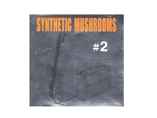 #2[廃盤]/SYNTHETIC MUSHROOMS
